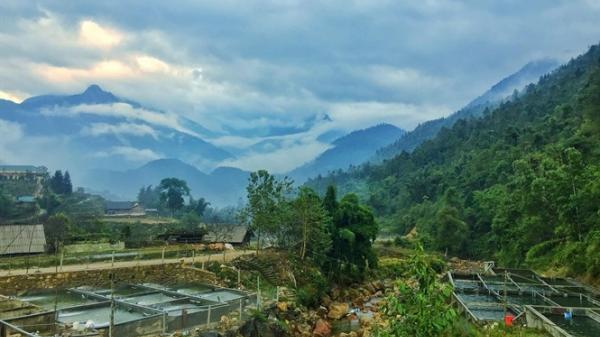 Thị trường cá hồi, cá tầm ở Lào Cai: Không lo ế, cá Trung Quốc cạnh tranh