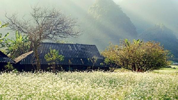 Thời tiết Lào Cai ấm trở lại