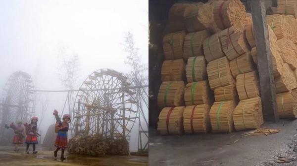 ĐIỂM TIN NÓNG CÁC TỈNH BẮC BỘ (22-28/10): Sa Pa có Lễ hội mùa đông, dùng hóa chất độc hại để làm đũa ăn, 9 con trâu bị chặt đứt gân