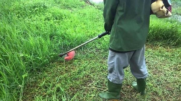 Đang cắt cỏ, người đàn ông Tây Bắc bị lưỡi phay máy cắt đâm thủng bụng
