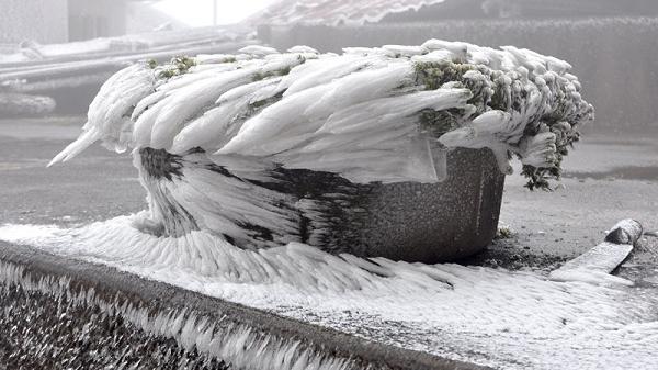 Cảnh tượng Mẫu Sơn phủ trắng băng tuyết vì nhiệt độ giảm sâu khiến nhiều người trầm trồ vì đẹp
