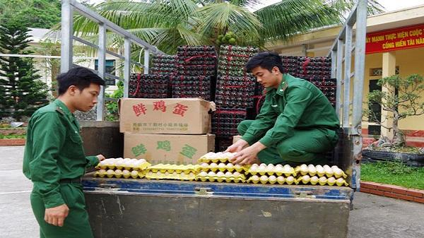 Bắt đối tượng vận chuyển 24.000 quả trứng gia cầm