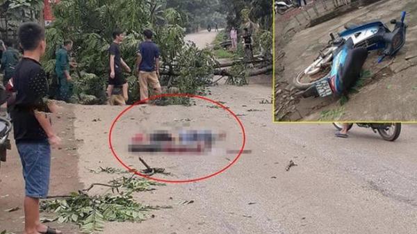 Lào Cai: Chặt cây trước nhà, cây đổ ra đường đè thanh niên đi xe máy tử vong