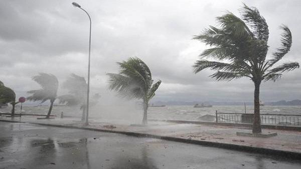 Kịch bản áp thấp nhiệt đới mạnh lên thành bão dịp Tết Dương lịch