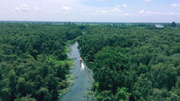 Tới Long An khám phá rừng tràm Tân Lập