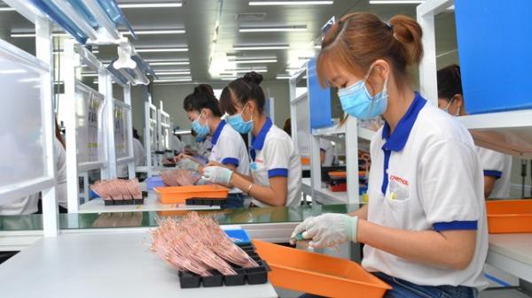 Trên 80% doanh nghiệp ở Đồng Nai đã hoạt động trở lại