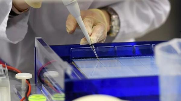 Nga sắp thành nước đầu tiên phê chuẩn vaccine chống Covid-19 trước 10/08