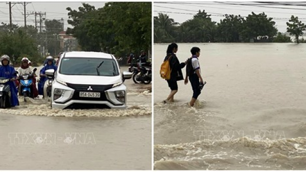 Mưa lớn gây ngập lụt nhiều vùng trũng thấp Ninh Thuận