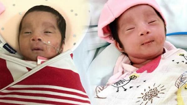 Mẹ Hà Nội nuốt nước mắt đình chỉ thai, bé ra ngoài thoi thóp thở rồi hồi sinh kỳ diệu