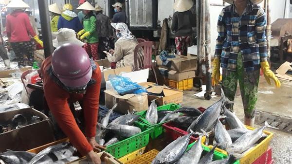Ninh Thuận: Nhiều mặt hàng thủy, hải sản tăng giá sau Tết