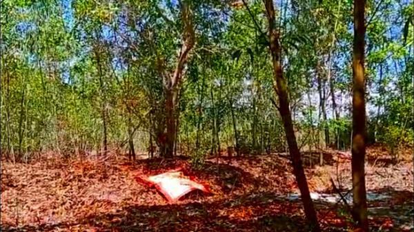 Bình Thuận: Điều tra vụ người đàn ông tử vong trong rừng tràm