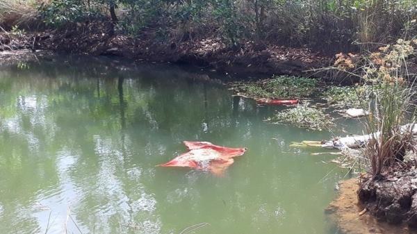 Chồng phát hiện vợ chết lõa thể ở ao cá sau nhà, trên người có nhiều vết bầm tím