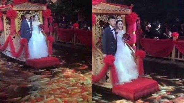 Đám cưới gây bão nhất MXH hôm nay: Rước dâu trên hồ thả đầy cá koi bơi lội
