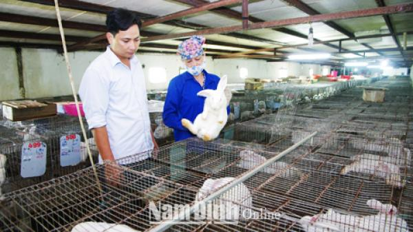 Nam Định: Viết về những nông dân điển hình sản xuất, kinh doanh giỏi