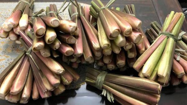 """Cư dân mạng lùng sục củ niễng Nam Định, xuýt xoa với những món ngon thuộc dạng """"cực phẩm"""""""