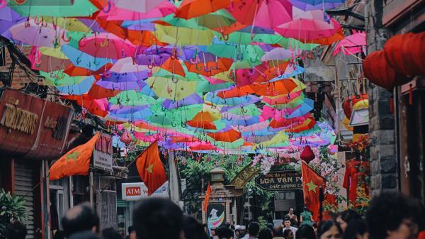 """Không xa Nam Định có một """"con đường ô"""" lãng mạn đẹp như tranh vẽ, người dân ùn ùn kéo đến chụp ảnh"""