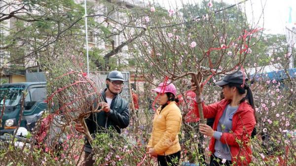 Chợ hoa Nam Định nhộn nhịp, tấp nập chưa từng thấy ngày giáp Tết