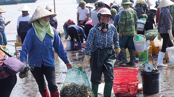 Nam Định: Lao xao nhộn nhịp chợ cá một vùng quê miền biển