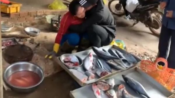 Đi xuất khẩu lao động 3 năm mới về nhà, chàng trai giả làm khách hỏi mua sạp cá của mẹ và giây phút tương phùng không ai ngờ đến