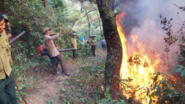 Người phụ nữ bị th.iêu sống trong quá trình d.ập lửa cứu rừng