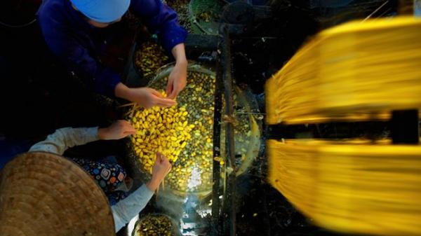 Cùng dạo quanh nơi được coi là dấu vết cuối cùng của ngành dệt Nam Định