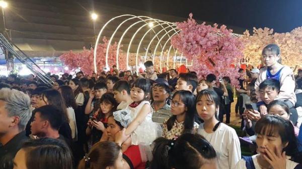 Nam Định: Thời gian CHÍNH THỨC tổ chức FESTIVAL HOA ANH ĐÀO, hiện tượng tuyết rơi, màn trình diễn ánh sáng độc đáo nhất từ trước đến nay
