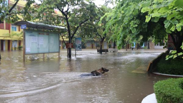 TP. Hòa Bình: Học sinh phải nghỉ học vì trường lụt