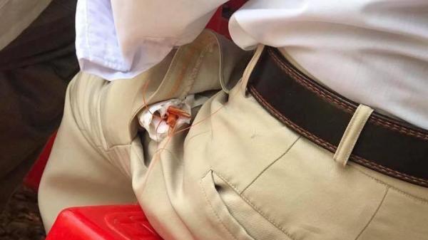 Hình ảnh 'con tôm bọc giấy ăn nhét trong túi quần' và những suy nghĩ khiến nhiều người bật khóc!