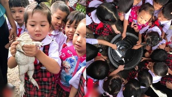 Cô giáo cho học sinh tìm hiểu về loài ếch, sẽ không có gì đặc biệt cho đến khi kéo đến tấm cuối cùng