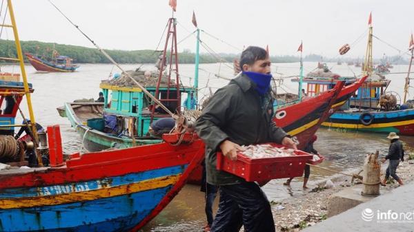 Trời rét căm căm, cảng cá Lạch Vạn (Nghệ An) vẫn nhộn nhịp trong ngày đầu năm