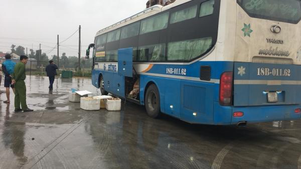 Hà Tĩnh: Bắt giữ xe khách 'nhét' hơn 1 tạ da bò và 15 con dê còn sống