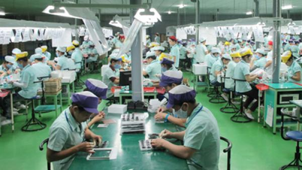 Bác thông tin Đài Loan (Trung Quốc) dừng nhận lao động Việt Nam
