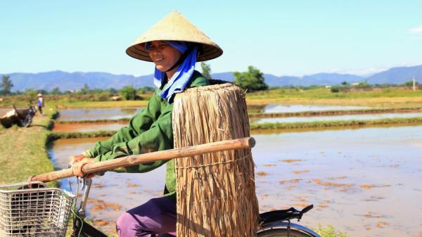 Về nơi nông dân Hà Tĩnh xem áo giáp lá là bảo bối 'vàng'