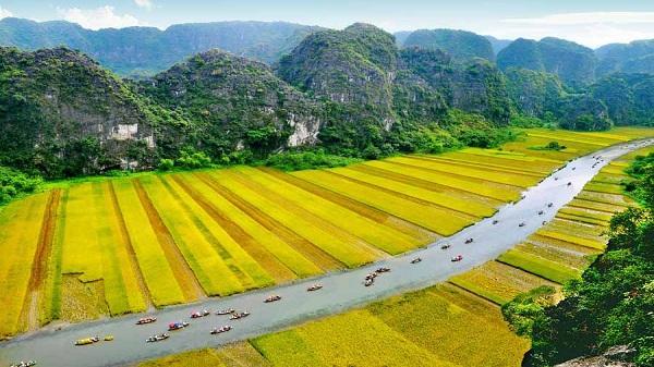 Đồng lúa ở Ninh Bình - một trong những cánh đồng đẹp mê hồn xứ Bắc