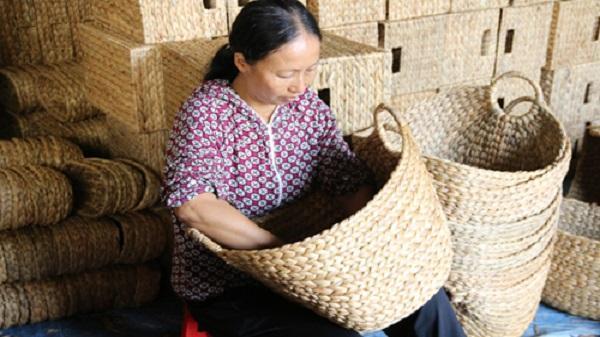 Nghề đan bèo tây xuất ngoại ở Ninh Bình