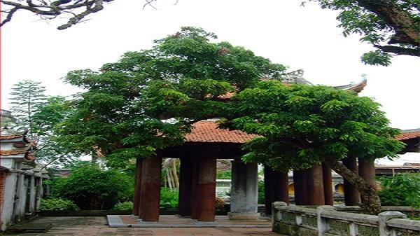 Cột kinh phật chùa Nhất Trụ: Bảo vật quốc gia đầu tiên của Ninh Bình