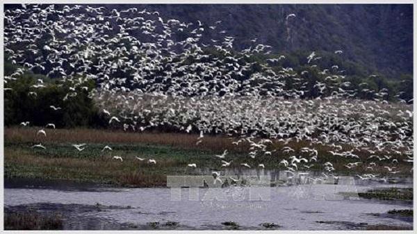 Hòa mình vào thiên nhiên tại Khu bảo tồn Vân Long