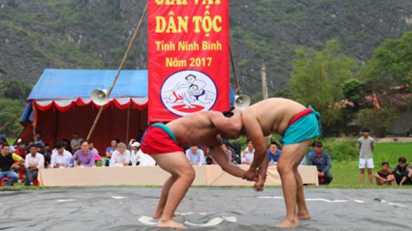 Vật dân tộc - môn thể thao hấp dẫn tại lễ hội Hoa Lư