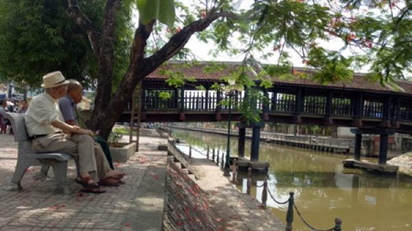 Độc đáo cây cầu ngói thế kỷ ở Kim Sơn