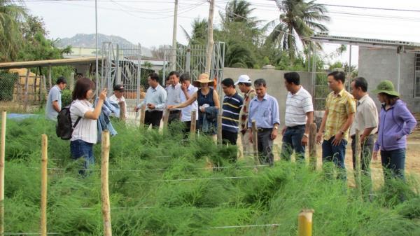 Đại gia Ninh Bình: Nuôi lươn trong bể kiếm trăm triệu vừa nhàn mà lại hay