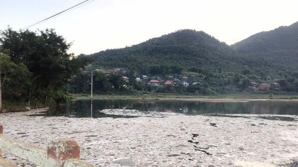 Điện Biên: Cần mạnh tay xử lý cơ sở chế biến dong riềng gây ô nhiễm môi trường