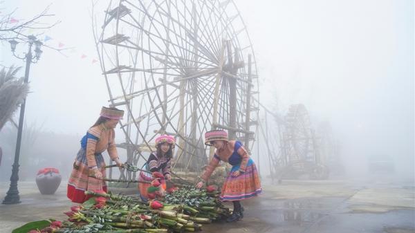Khai mạc Tuần lễ đặc sản Tây Bắc và các tỉnh miền núi phía Bắc