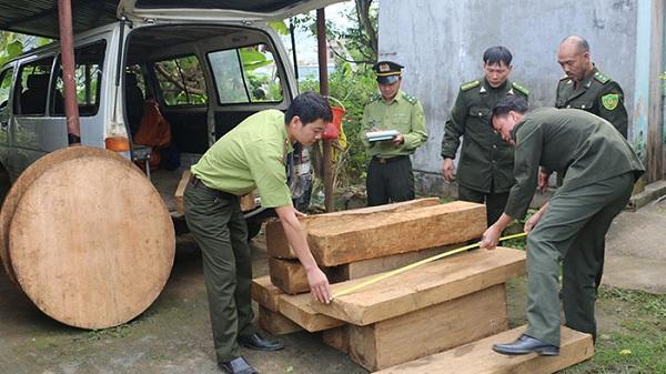 Điện Biên: Đối tượng vận chuyển t.rái phép 14 hộp, khúc gỗ pơ mu vứt xe, bỏ chạy khi thấy tổ công tác