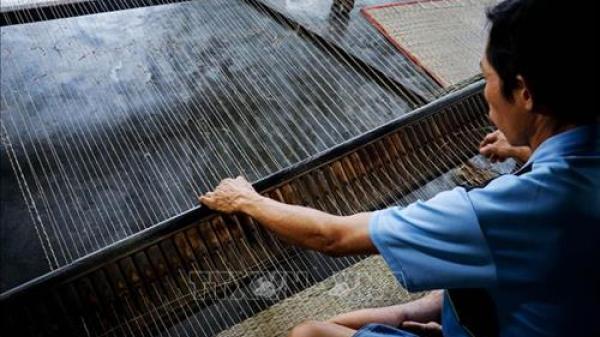Ghé thăm ngôi làng dệt chiếu nổi tiếng cả một vùng của những người Ninh Bình di cư thành lập