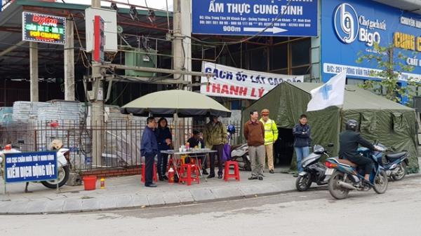 Ninh Bình: Thêm một ổ bệnh dịch tả lợn châu Phi tại huyện Nho Quan