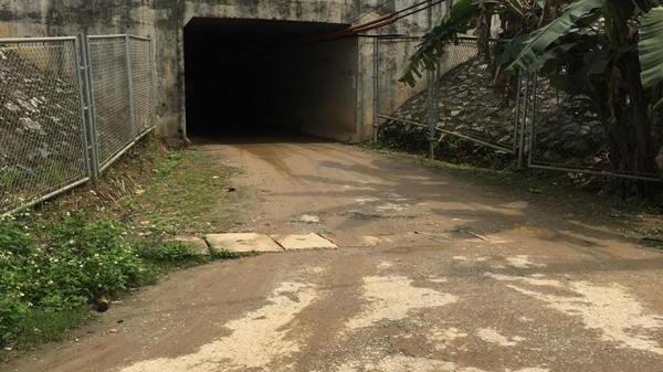 """Yên Bái: Nông dân """"kêu trời"""" vì không có đường chở nông sản"""