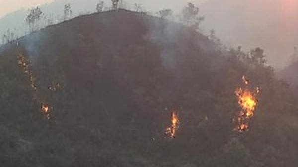 Liên tiếp xảy ra nhiều vụ ch.áy rừng ở huyện Trạm Tấu (Yên Bái)