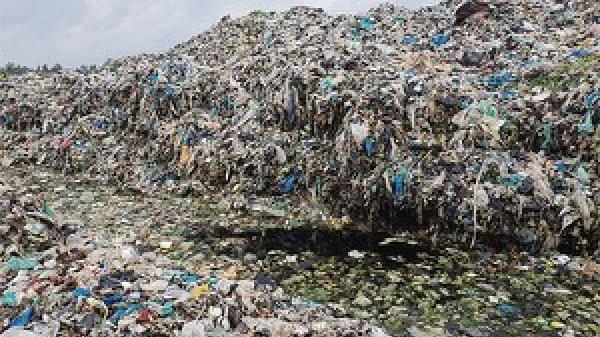 Rúng động miền Tây: Phát hiện hơn 300 thai nhi bị bỏ theo rác thải