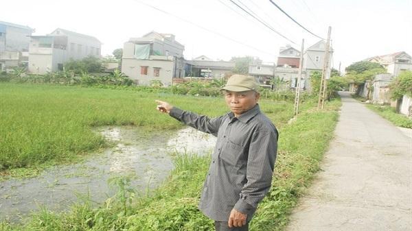 Bó tay với nạn chuột tàn phá lúa mùa ở Ninh Bình?