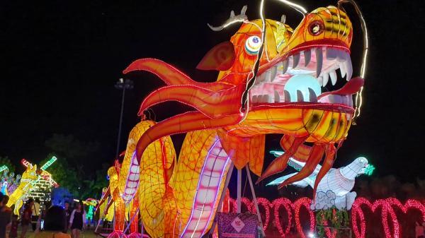 Ninh Bình: Cận cảnh những hình ảnh siêu lung linh trong 2 ngày đầu diễn ra Lễ hội ánh sáng- đèn lồng